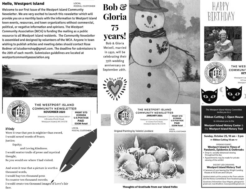 collage of newsletter covers